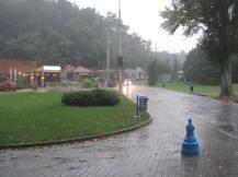 Very rainy day...