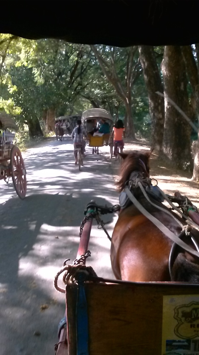 Not the only horse cart on the roads...