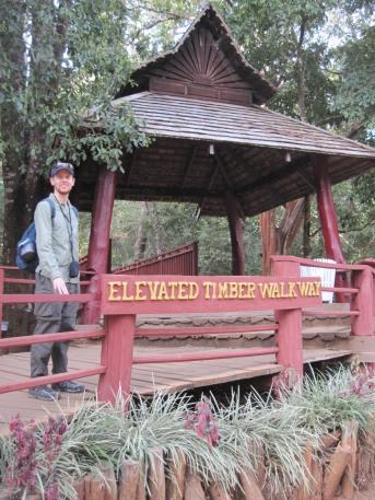 The timber walkway