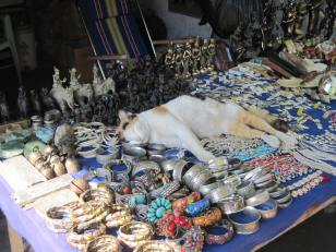 Cat enjoying the trinket booths