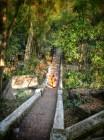 a monk heading down