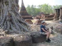 Peggy seeking enlightenment beneath a bodhi tree
