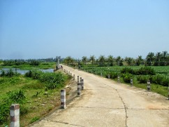 Through rice paddies and shrimp farms
