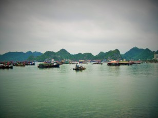 Looking out on the boats in Cat Ba harbor