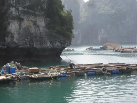 One of the floating fish farmss
