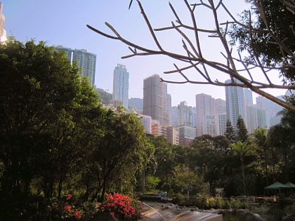 In Hong Kong park