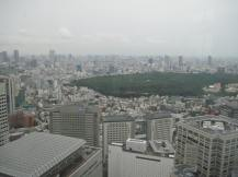 The green space is the park containing the Meiji Shrine