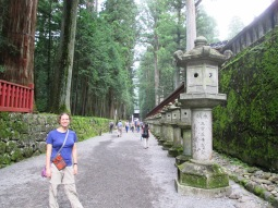 Stone lanterns on the walkway between temples