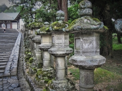 Stone lanterns line the walkway there